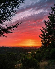 Sam McDonald Park Sunset