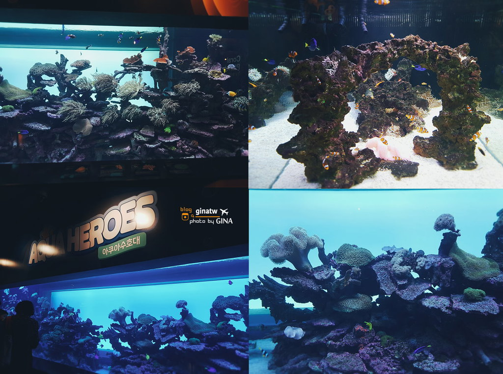 【漢江汝矣島站】63CITY大廈優惠票卷|Aqua Planet海洋世界水族館|首爾景觀台+空中展覽館(李敏鎬 全智賢 藍色海洋的傳說韓劇拍攝場景) @GINA環球旅行生活