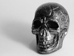 B&W skull photo like Warhol