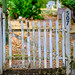 DSCF1587.jpg by RHMImages