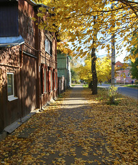 Autumn in Tver