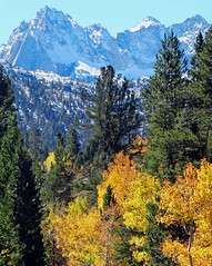 High Sierra Autumn, Bishop Creek Canyon, CA 10-18