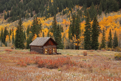 castle forks city ashcroft ghost town co colorado chloride mining autumn aspen trees landscape cabin october 2018 fall