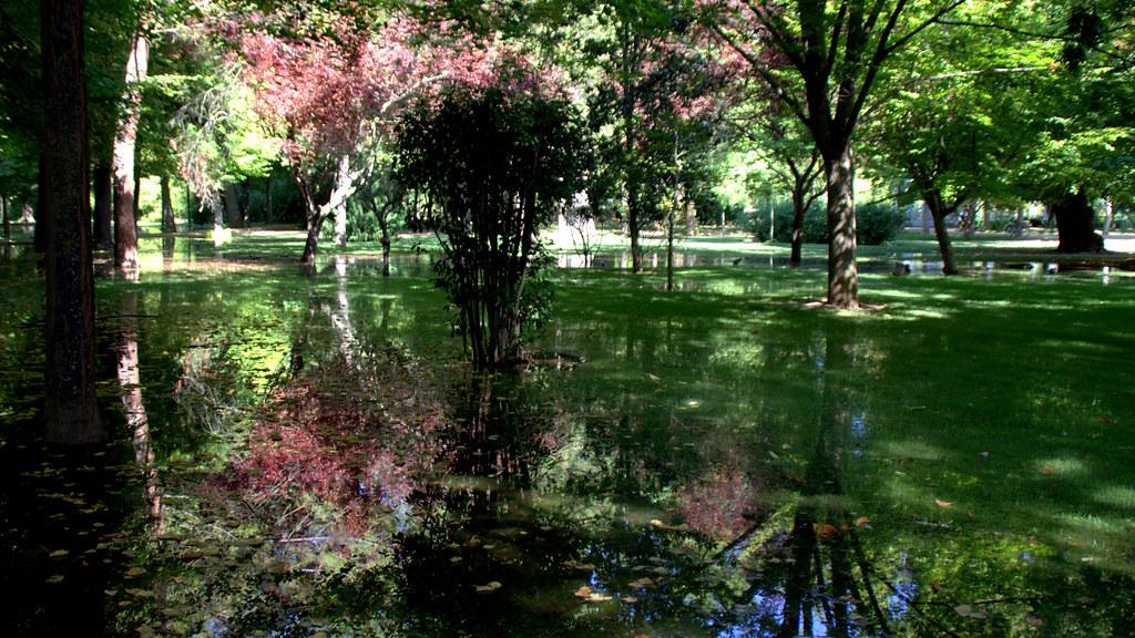 Jardines de Aranjez 20-09-2018 12-49-52