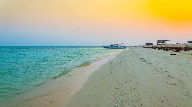 4696 Daraka Island in Jazan, a Saudi island inhabited by Birds 01