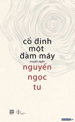co-dinh-mot-dam-may