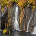 Hraunfossar Detail by Sophie Carr Photography