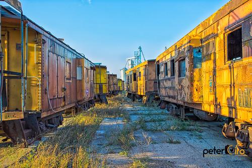 Abandoned Caboose Rail Cars in Prairie Du Chein WI