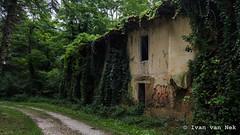 Forêt de Fabas - Photo of Saint-Laurent