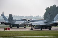 RAF Lakenheath - Raptors, Eagles and Hornets - 16.10.2018