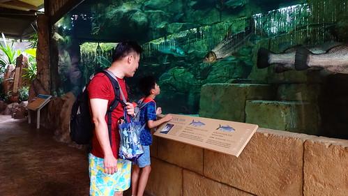 河川生態公園