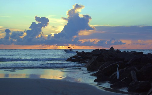 artisticsunrisephotography sunrise florida summer northernflorida 7618 unitedstates usa saintaugustineflorida villanobeach 2018 beach sea sand water atlanticocean waves ocean jetty sky cloudscape fun july2018 landscape boulders cloud horizon naturespaintbrush color lifesabeach greategret