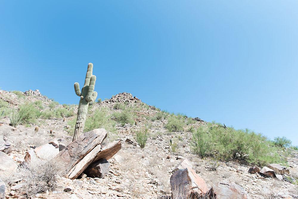 Arizona/Utah Day Four - 2018
