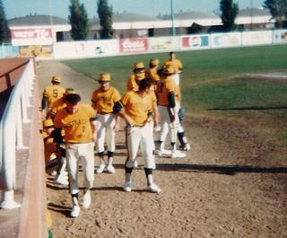 1981 TWG Sports Baseball