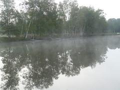 Sainte Montaine Eté2016, les étangs (2)