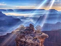 Grand Rays