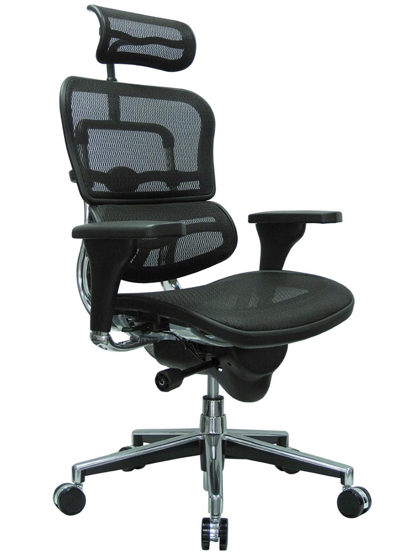 Ergo human Mesh high back ergonomic chair - $619