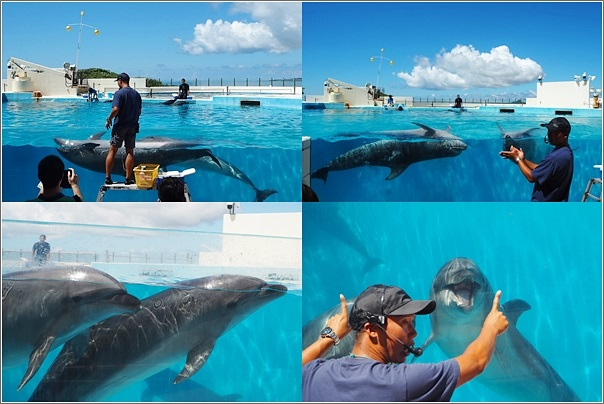 Kkday Okinawa Enjoy Pass (12)
