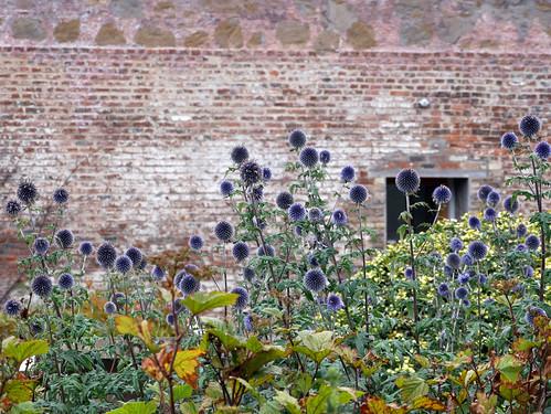 Prior Wood Gardens