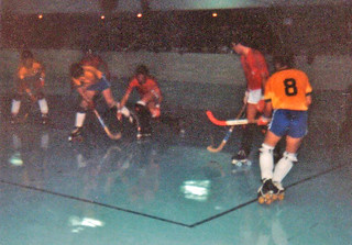 1981 TWG Sports RollerSkating Hockey