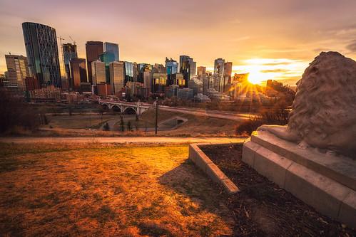Loin Statue Sunset