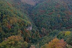 Monte Milagro en otoño
