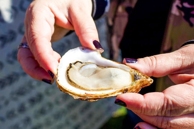 Foodie Fears: My First Raw Oysters