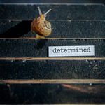 determined