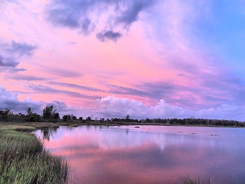 Pink sunrise 20181007
