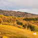Herbst_Stalten_072a