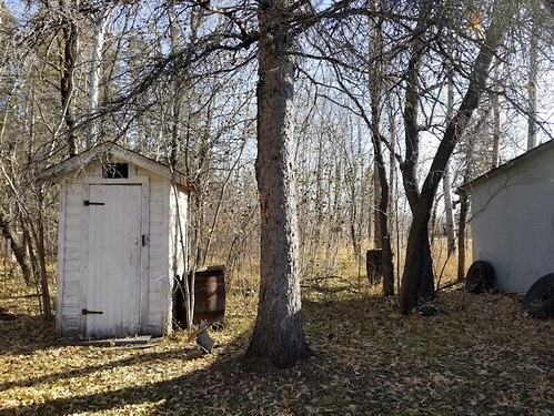 20181024.cleanup.sprucegroveperimeter.outhouse.before