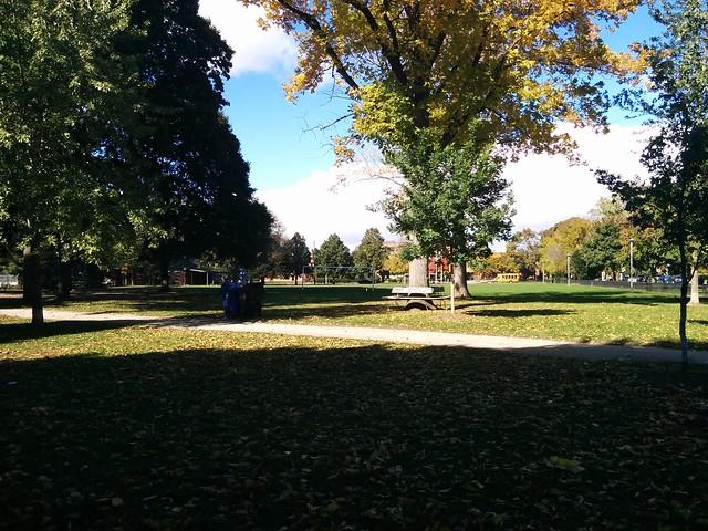 In Dufferin Grove Park (2) #toronto #dufferingrove #dufferingrovepark #parks #fall #autumn #latergram