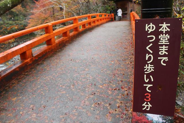 saimyouji-koyo007