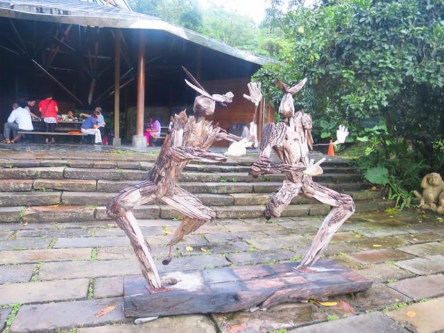 仁山植物園4