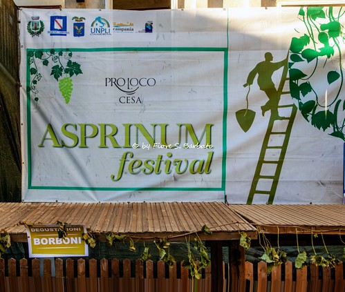 Cesa (CE), 2018, Asprinium festival.