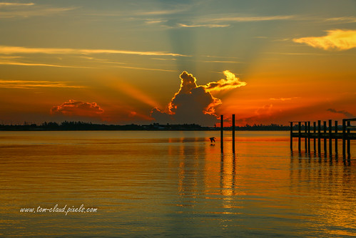sun sunrise morning dawn pier reflection clouds cloudy rays sunbeams weather seascape peican bird flying fly lowflying nature mothernature water river indianriver lagoon indianriverlagoon jensenbeach florida usa sky