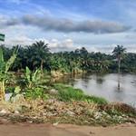 Owode Owena near Asolo