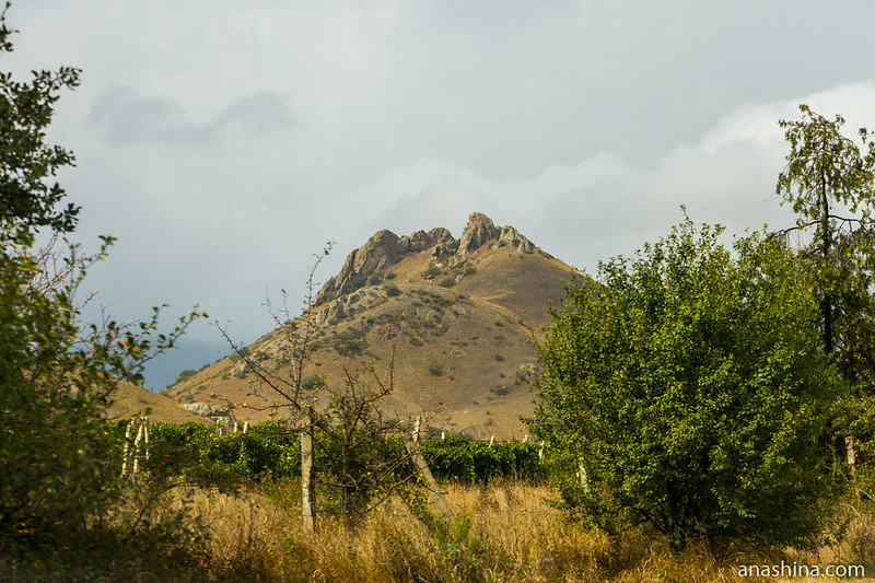 Виноградники и скала, Крым