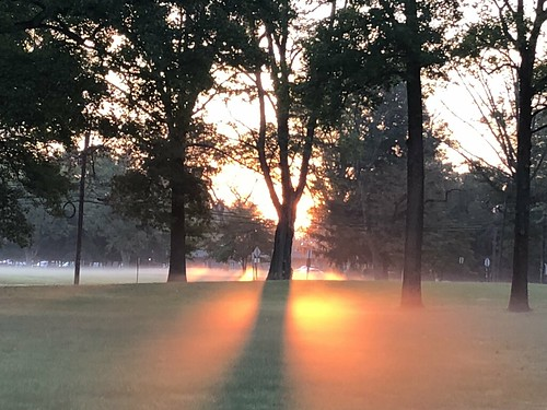 sunrise princeton newjersey nature