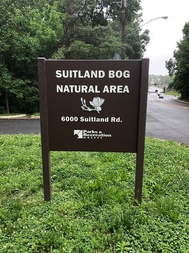 Suitland Bog natural area; Suitland, MD.