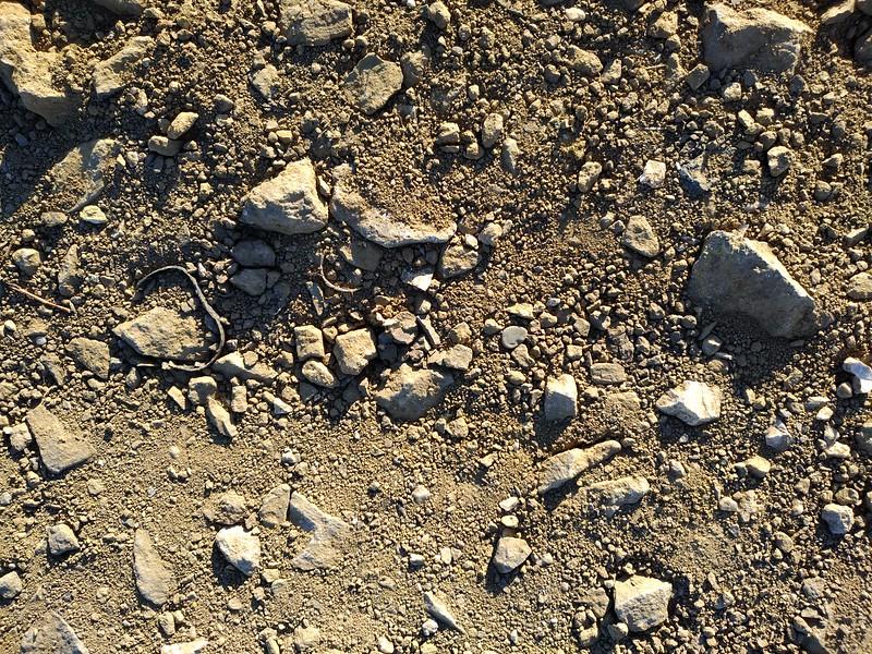 Ground texture #21