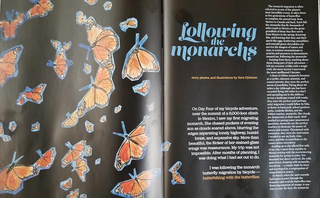monarch story
