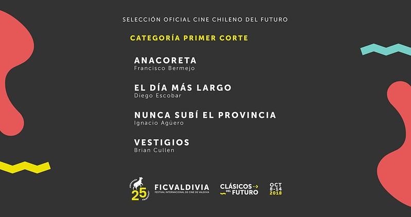 [25] FICValdivia: Cine Chileno del Futuro