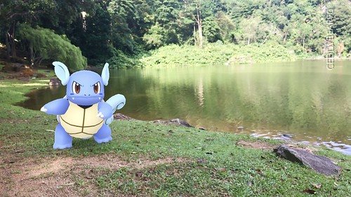 008 Wartortle (position=left)