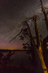 Along Crater Lake at Night