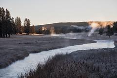 Nez Perce Creek - Yellowstone