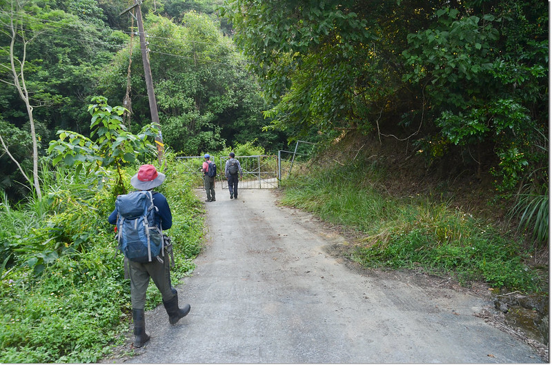 竹頭山農路