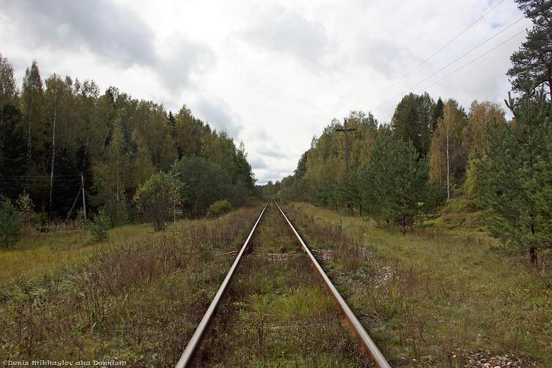 Бологое-Полоцкая железнодорожная линия. Перегон Фирово - Осташков.