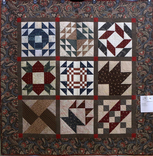 79: Sampler Quilt - Cyndi Anderson