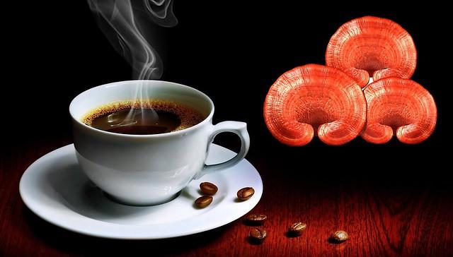 cafe nấm